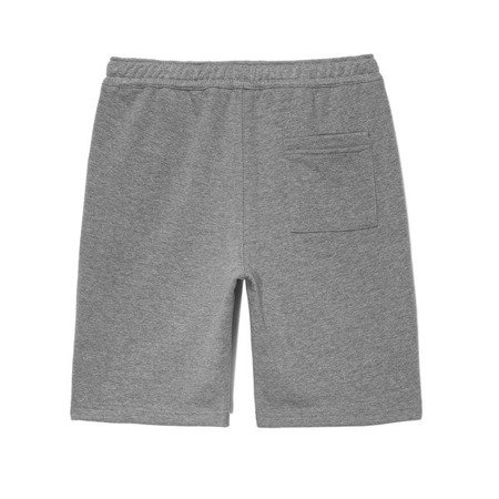 SHORTS NORMAL GREY